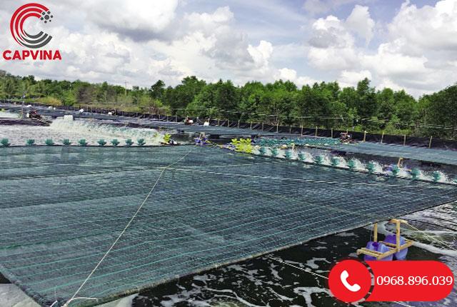Ứng dụng tăng đơ cáp trong nuôi trồng thủy sản